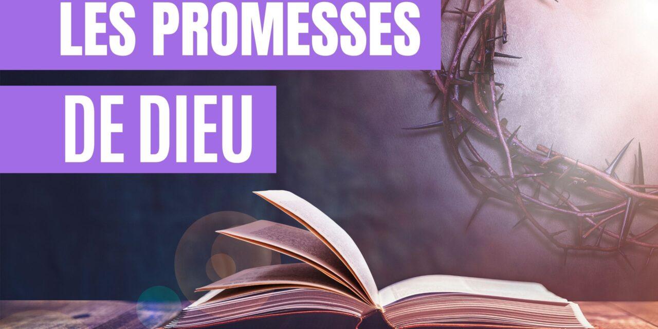 Copy-of-Les-promesses-de-dieu-1-1280x640