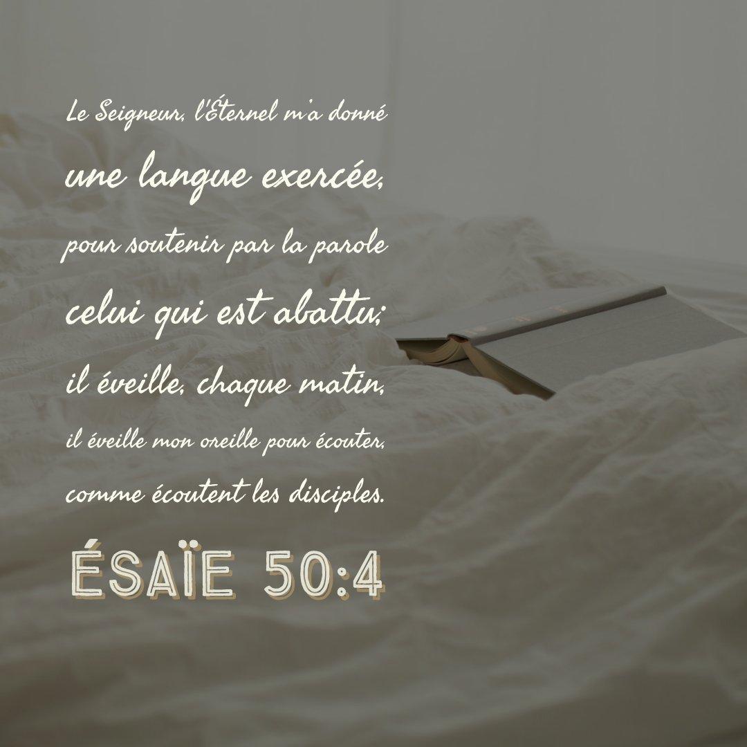 esaie-50-41183470477