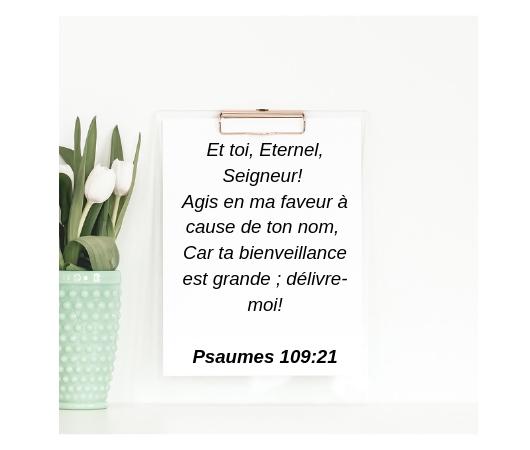 Et-toi-Eternel-Seigneur-Agis-en-ma-faveur-à-cause-de-ton-nom-Car-ta-bienveillance-est-grande-délivre-moi-Psaumes-109_21