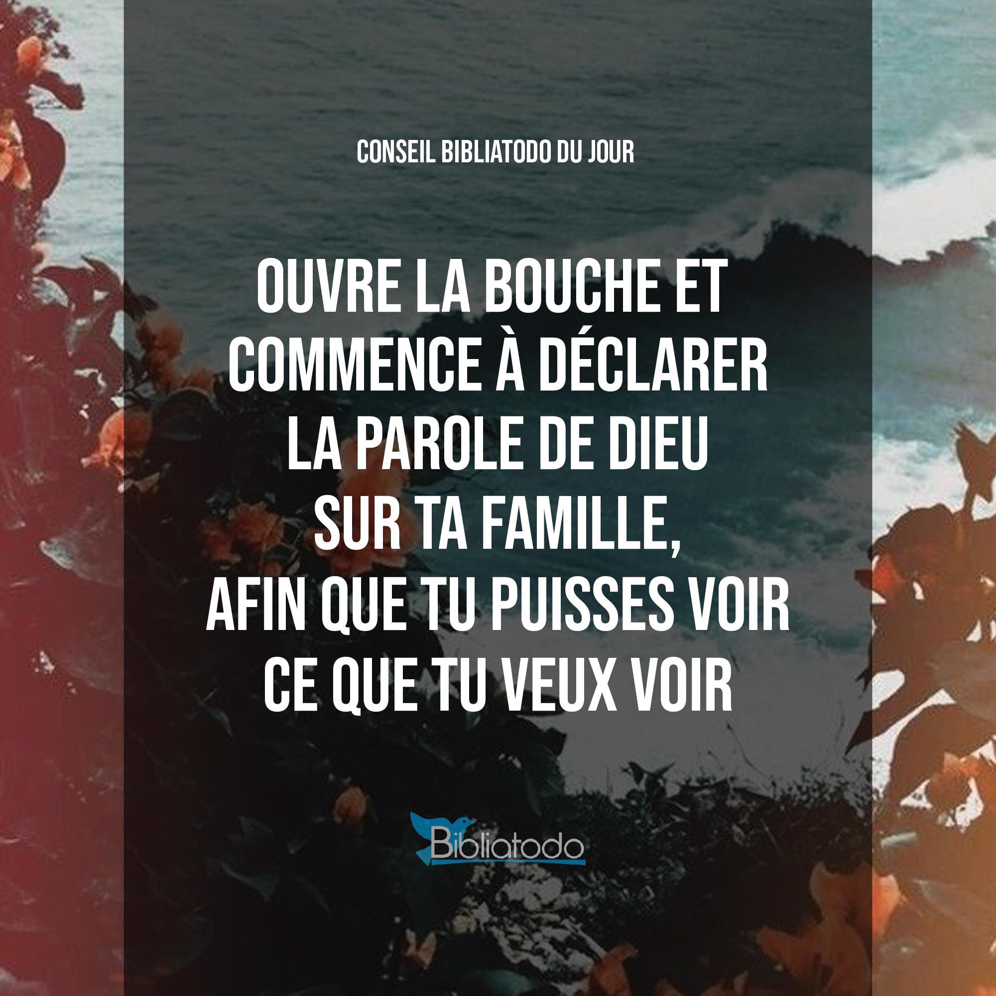 fr-con-784-Ouvre-la-bouche-et-commence-à-déclarer-la-parole-de-Dieu-sur-ta-famille