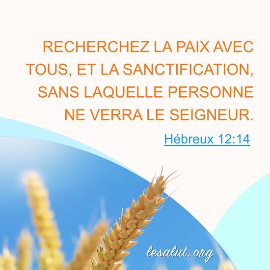 Hébreux-12-14-–-Recherchez-la-sanctification