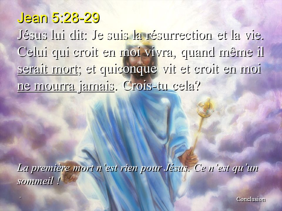 Jean+5 28-29