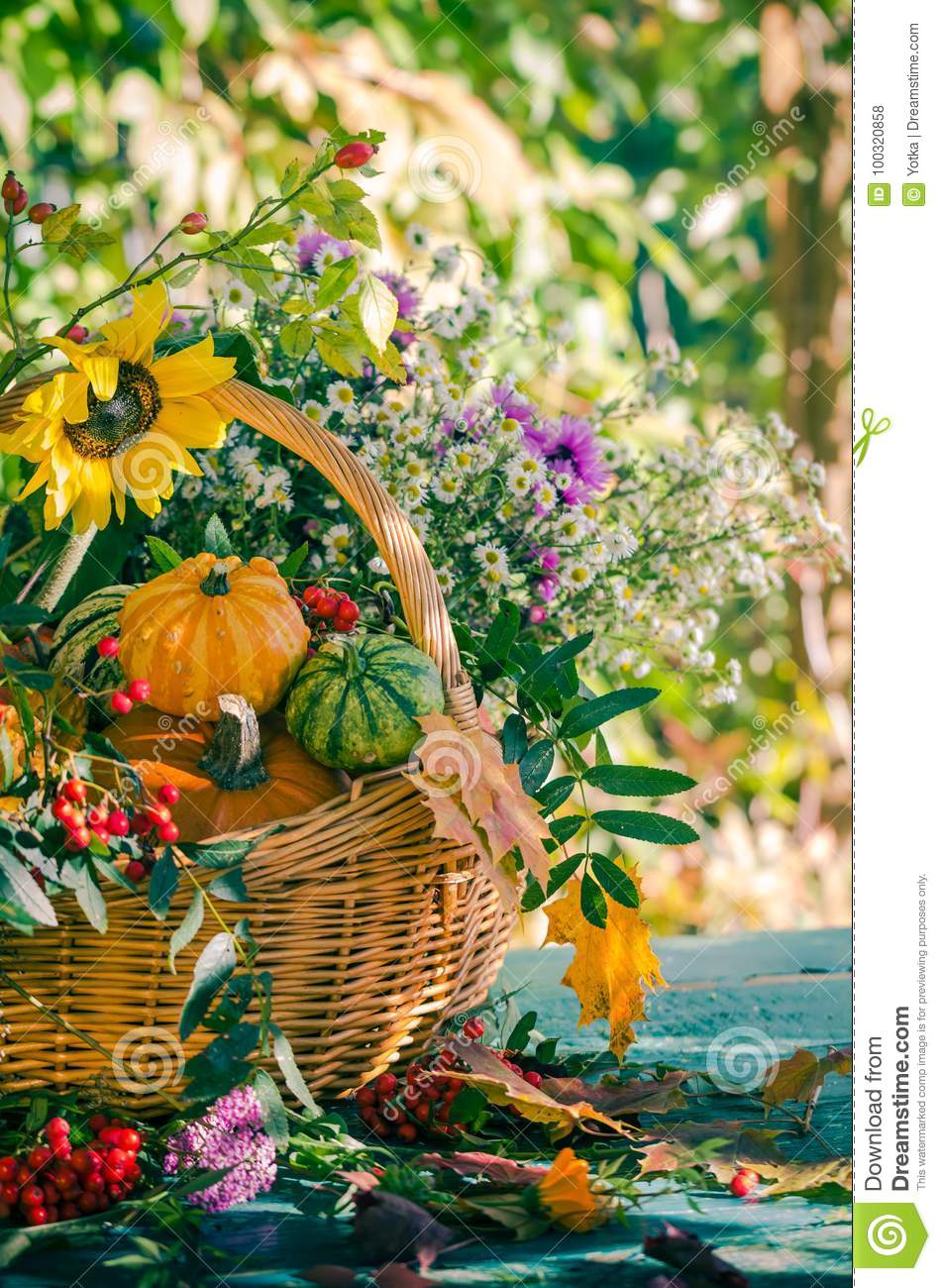 le-potiron-de-jardin-récolte-d-automne-panier-chute-porte-des-fruits-fleur-colorée-100320858