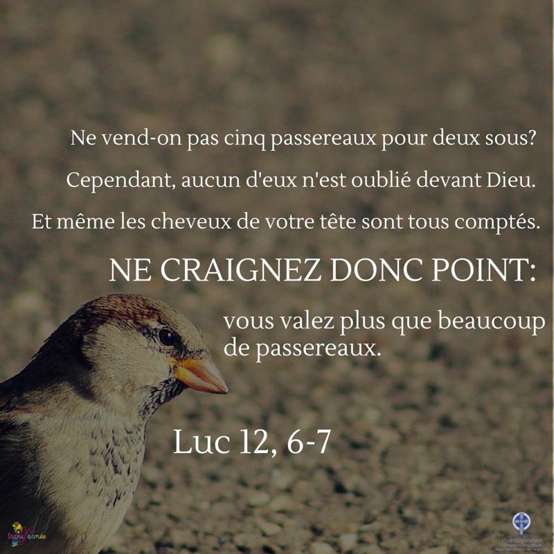 luc_12_6-7