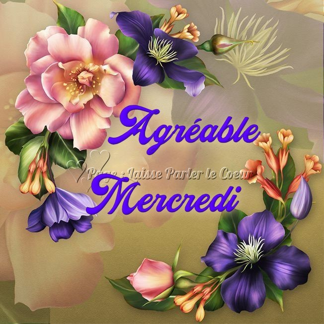 mercredi_166