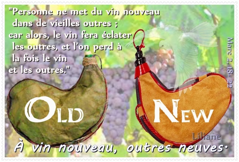 ob_464150_vin-no10
