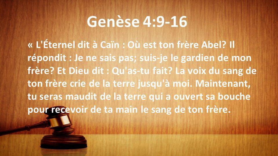 ob_dab211_genese