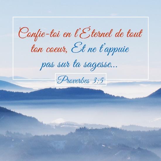 Proverbes-3:5-Confie-toi-en-lÉternel-de-tout-ton-coeur-Et-ne-tappuie-pas-sur-ta-sagesse