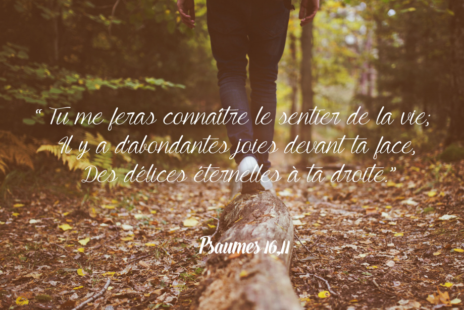 psaumes16-10