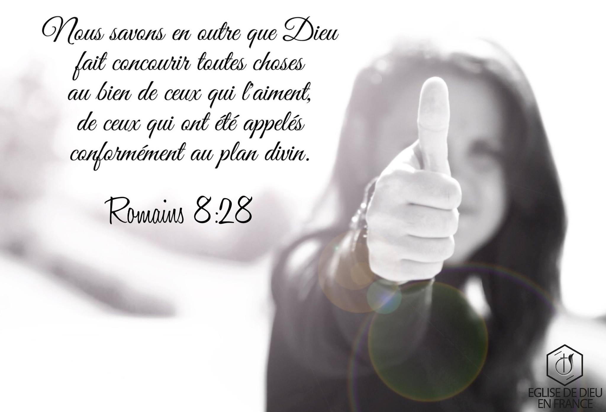 romains-8-28