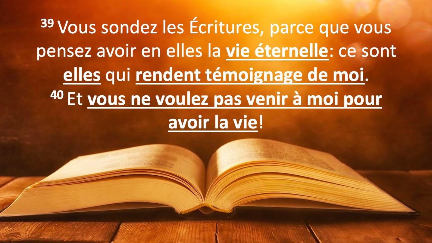 vous-sondez-les-ecritures-parce-que-vous-pensez-avoir-en-elles-la-vie-eternelle-ce-sont-elles-qui-rendent-temoignage-de-moi-jean-539