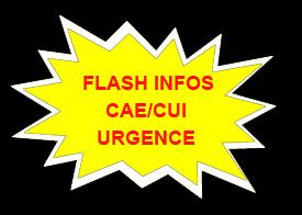 https://static.blog4ever.com/2013/06/743127/1-CAE-CUI.jpg