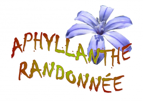 Logo APHYLLANTHE RANDONNEE JPG.jpg