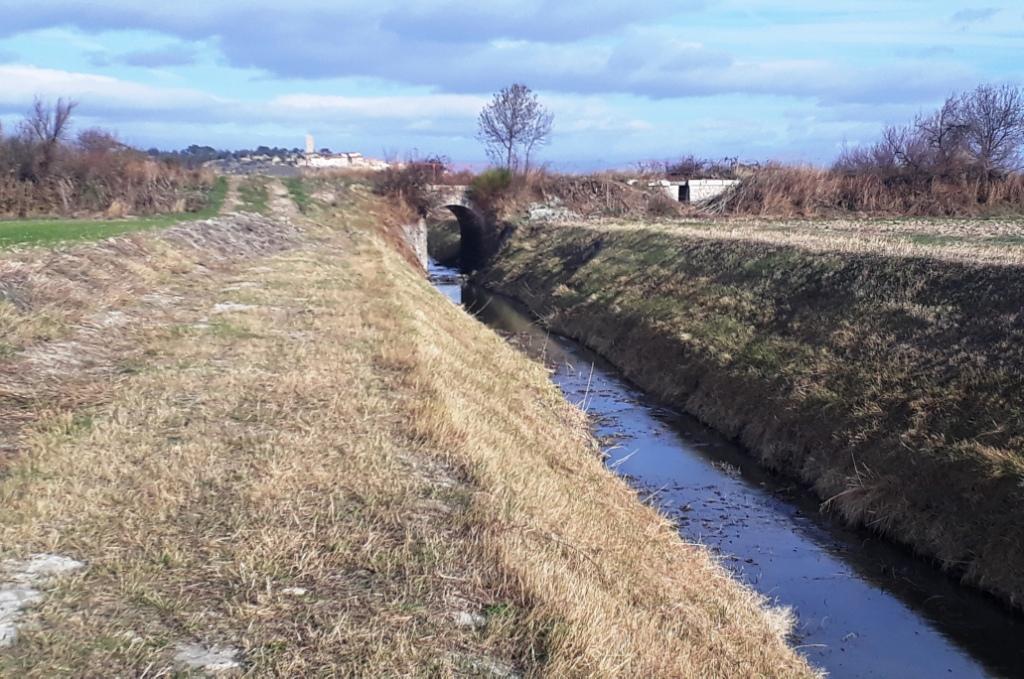 Rando Canal du Midi (2).jpg