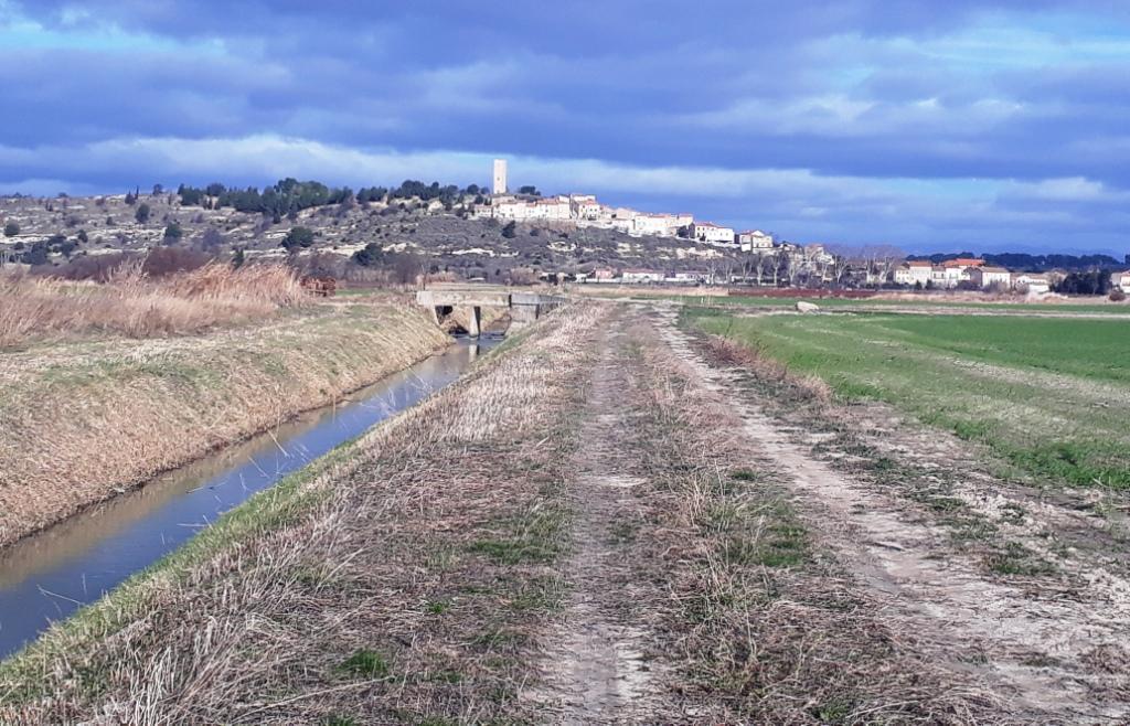 Rando Canal du Midi (3).jpg