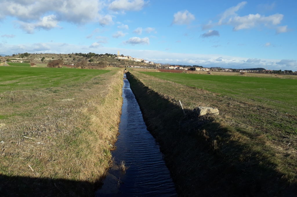 Rando Canal du Midi (4).jpg