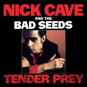 Nick Cave & The Bad Seeds_Tender Prey_CD + DVD.jpg