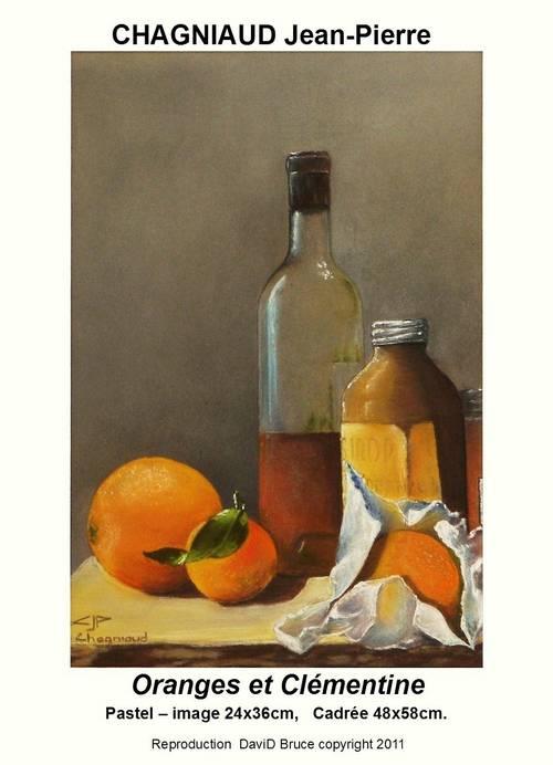 Oranges et clémentine pastel sec 201136x34.jpg