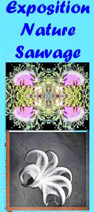 affiche expo Eskenazy.jpg