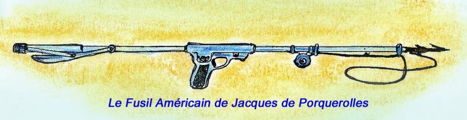 Fusil Américain Couleur copie.jpg