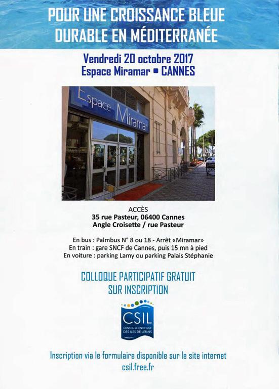 col cannes 4.jpg