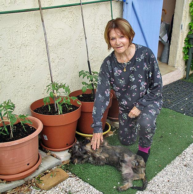 3. jardinière.JPG