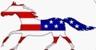 cheval_de_drapeau_americain.jpg