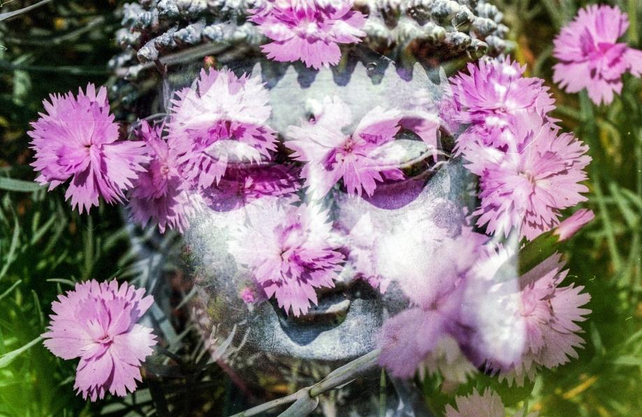 buddha-1280434_1920.jpg