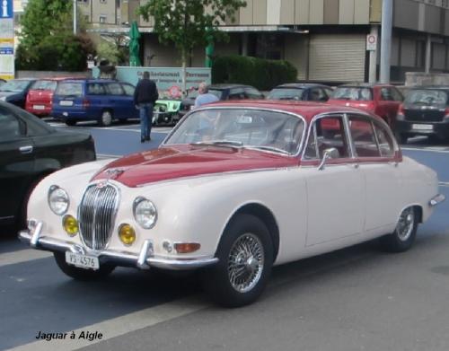 Jaguar Aigle .jpg