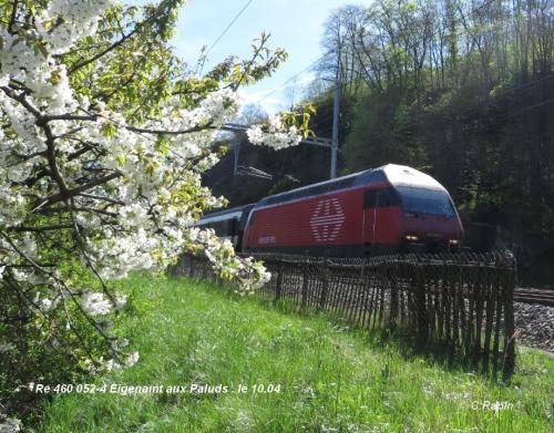 Re 460 052-4 Eigenamt aux Paluds 02. le 10.04..jpg