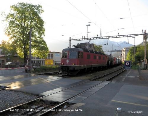 Re 66 11620 Wangen bei Olten Mty 14.04..jpg