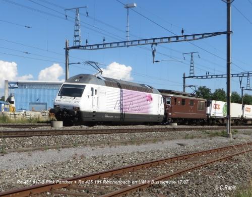 Re 465 017-2 Pink Panther + Re 425 191 Reichenbach à Bsy le 17.07.jpg