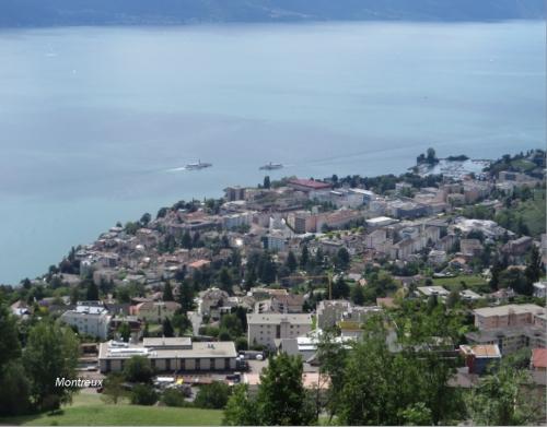 Montreux depuis en haut .jpg