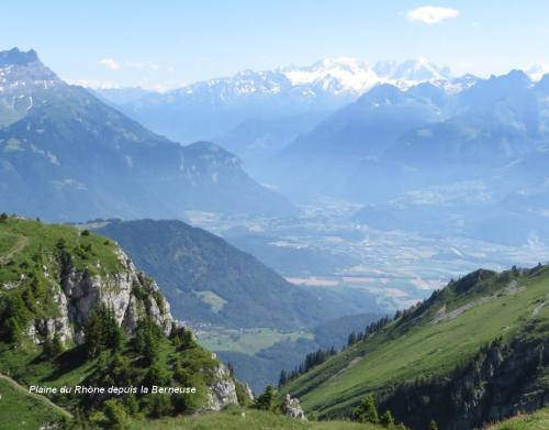 Plaîne du Rhône depuis la Berneuse .jpg