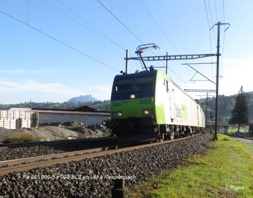Re 485 009-5 + 008 BLS en UM à Reichenbach .16.09.jpg