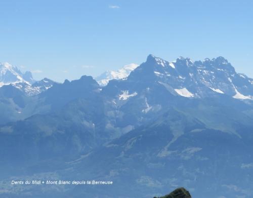 Dents du Midi + Mont Blanc depuis la Berneuse.jpg