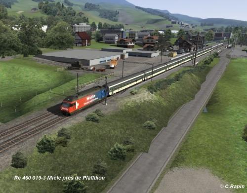 Re 460 019-3 Miele Pfäffikon .jpg