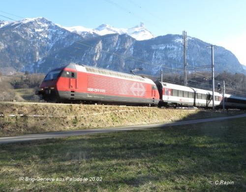 IR Brig-Genève aux Paluds le 20.02.jpg