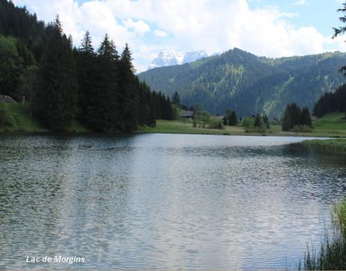 lac de Morgins 02 ..jpg