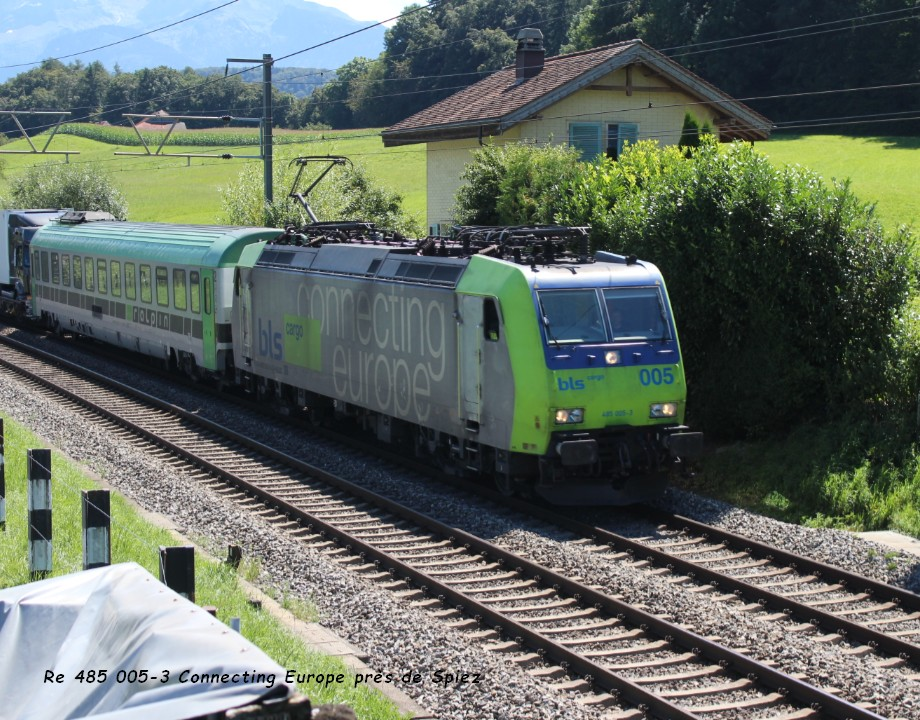 16 Re 485 005-3 Connecting Europe près de Spiez 12.08..jpg