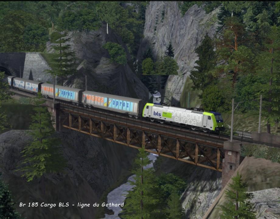 Br 185 Cargo Gothard 01 22.01..jpg