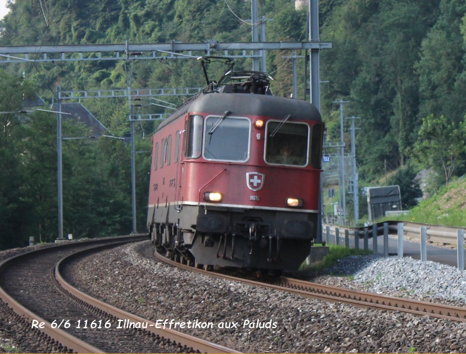 Re 66 11616 Illnau-Effretikon aux Paluds 23.06.jpg