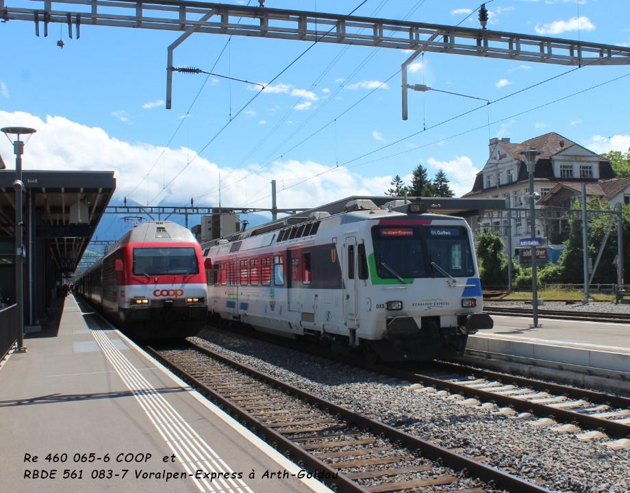 Re 460 065-6 COOP  et RBDE 561 083-7 Voralpen-Express à Arth-Goldau ..jpg