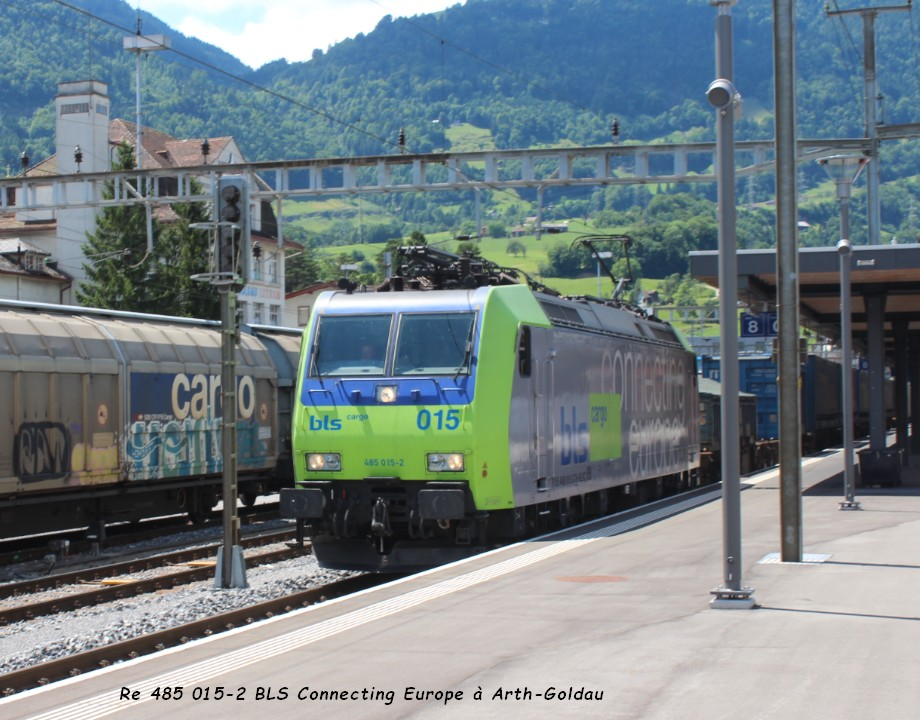 Re 485 015-2 BLS Connecting Europe à Arth-Goldau ..jpg