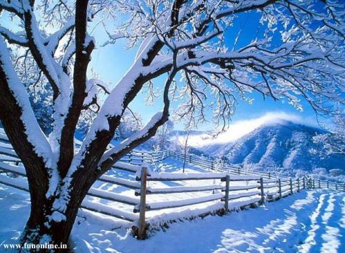 neige-L-SooUd9.jpeg