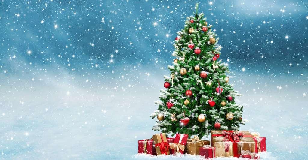 Sapin de Noël.jpg