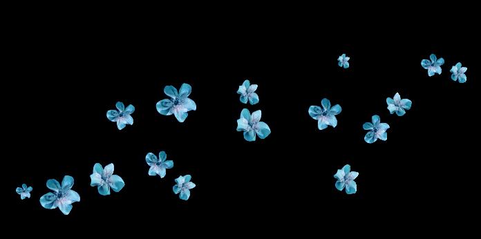 petitse_fleurs.png