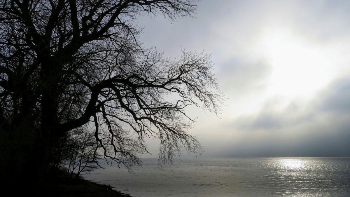 lac gris.jpg