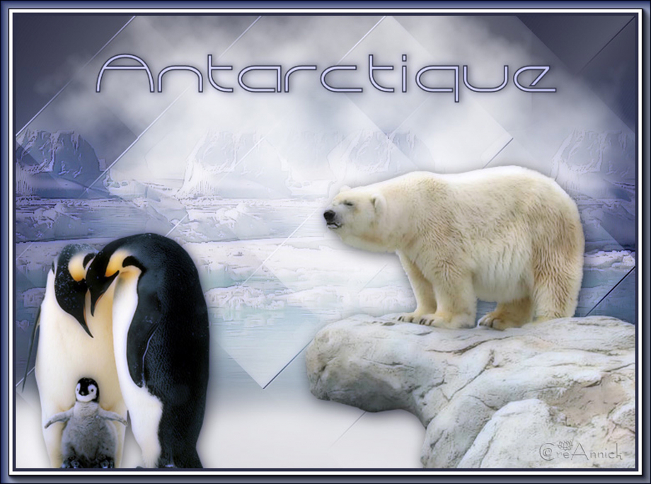 antarctique 030719.jpg