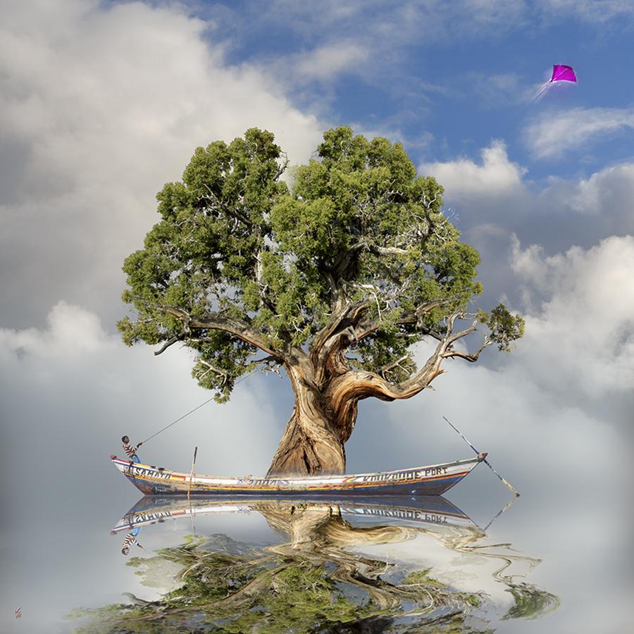 rêve de nature - l'envol^2.jpg
